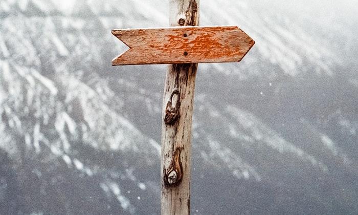 choose-the-path