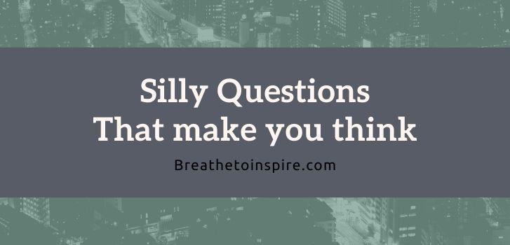 Silly questions that make you think 500 Questions that make you think