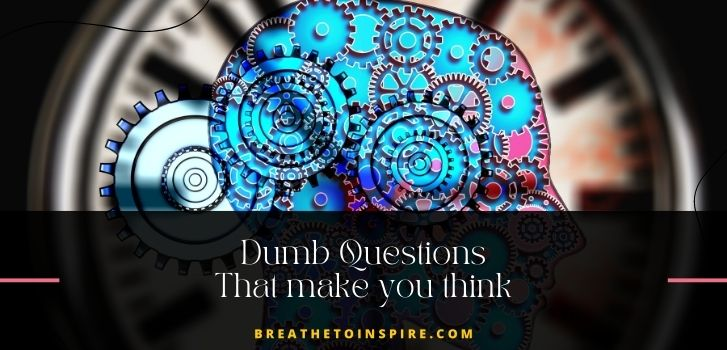 dumb-questions-that-make-you-think